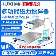 上海沪析磁力搅拌器