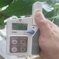 手持式叶绿素测定仪SYK-Y104