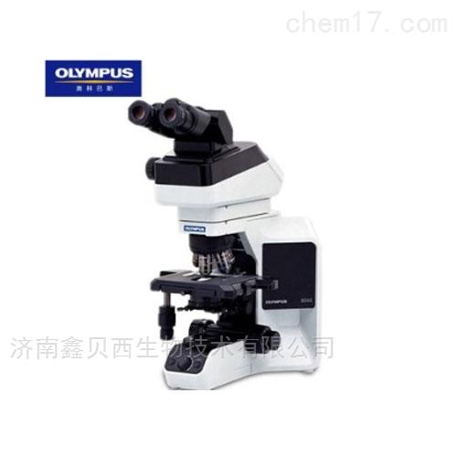 奥林巴斯正置生物显微镜