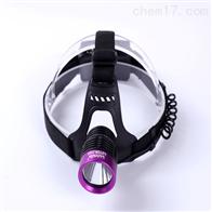 LUYOR-3101S美國路陽LED紫外線頭盔式黑光燈