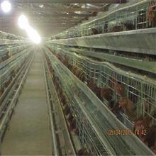 安徽猪场门口车辆消毒设备