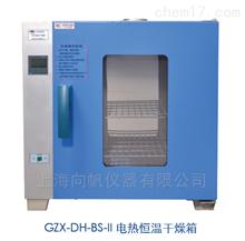 HGZN-Ⅱ-43电热恒温干燥箱(GZX-DH.300-BS-II)
