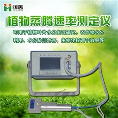 HM-ZT10植物气孔计