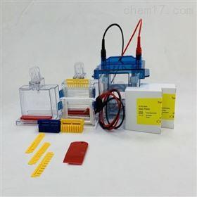 VE-180天能微型垂直蛋白电泳槽