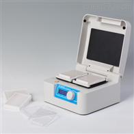 DH400XR/TS200C微孔板恒温振荡器