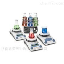 ThermoScientificRT2优异型加热搅拌器