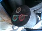 YCW 抗严寒YCW 3*10+2*2.5重型耐油污电缆