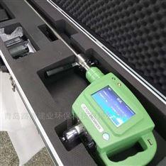 LB-7025B便携式油烟检测仪带数据储存