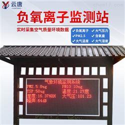YT-FY06负离子监测仪