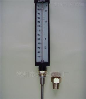 WNG板式杀菌锅温度计