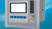 E200-X氧气分析仪