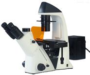 倒置熒光顯微鏡