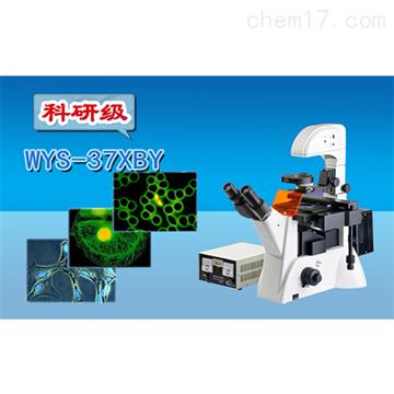 WYS-37XBY三目倒置荧光显微镜