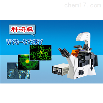 WYS-37XBY三目倒置熒光顯微鏡