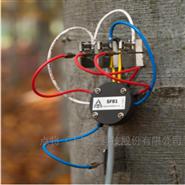 EMS 81探针式茎流(液流)测量系统(SDI-12)