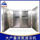 山东海鲜液氮冷冻设备价格/速冻机