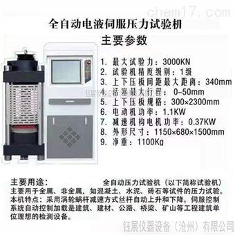 WYL-3000全自动压力试验机