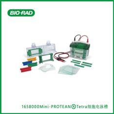 伯樂Bio-RadMini-PROTEAN®Tetral細胞電泳槽
