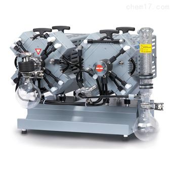 MV 10C EX +AK+EK 化学隔膜泵