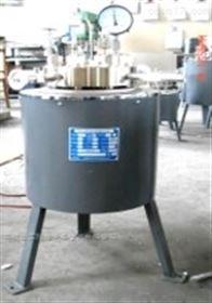 FCZ 0.1-3L高温高压磁力搅拌反应釜