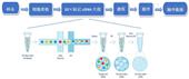 單細胞轉錄組測序