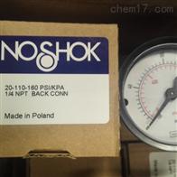 20-110-160 PSI/KPA美国NOSHOK压力表
