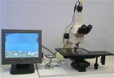 SQ200A微分干涉顯微鏡