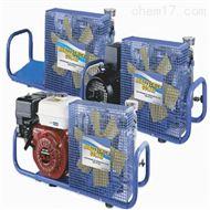 mch6MCH6呼吸器填充泵(380V三相電源驅動)