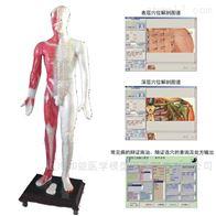 MAW-170E北京针灸穴位发光模型