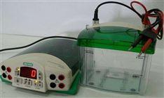 伯樂電泳儀售后維修電話(Bio-Rad)在線咨詢