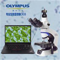 CX33奥林巴斯显微镜