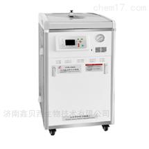 LDZM-80KCS-II立式灭菌器