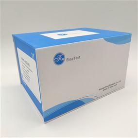 Human ADIPOR1 ELISA试剂盒