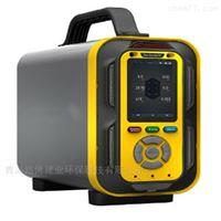 国产气体检测仪泵吸手提式VOC 气体分析仪
