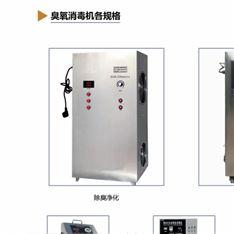 上海浦东国润环保臭氧杀菌器 厂家