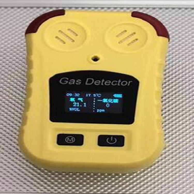 便携式二合一气体检测仪