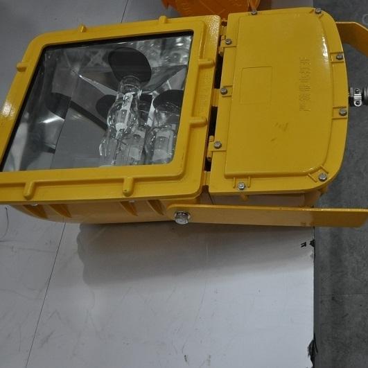 海洋王BFC8110-防爆泛光灯*