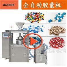 广州中小型半自动胶囊填充机包安装调试送货