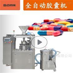广州胶囊填充机