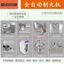 ZW-09X广州药店诊所水丸机