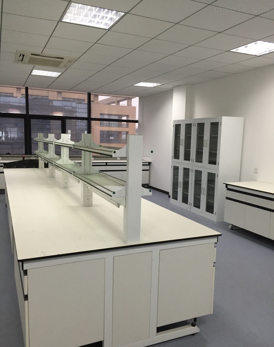 黑龙江实验室仪器台理化板台面实验台通风柜价格