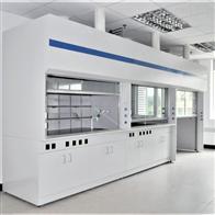 YIN-11广东核电系统实验室PP标准通风柜