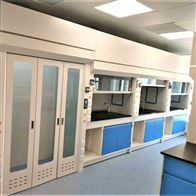 TONGFENG-01河北药学院对液体吸收性强实验室PP通风柜
