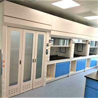 P10海南农业大学耐腐蚀性强PP实验台通风柜