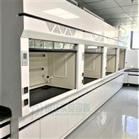TFGL16广东热通实验室通风橱PP通风型排风柜