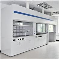 YJ-TFG01重庆不脱层全钢通风柜通风橱银江实验室家具