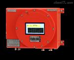 RL-E300型防爆露点分析仪