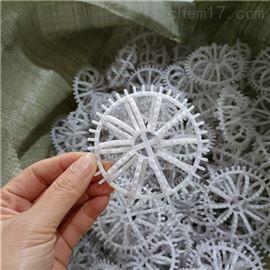 出口澳大利亚白色PVC带刺花环填料DN76R2