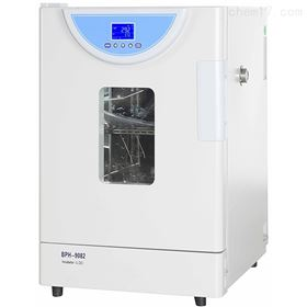 BPH-9042上海一恒精密恒温培养箱