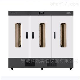 GDN型智能光照培养箱系列 GXZ-1500